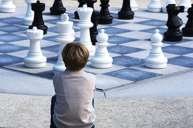 Chess for Hire Gardens & Events